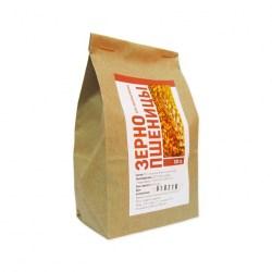 Зерно пшеницы для проращивания