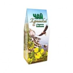 Чай курильский с берегов Байкала